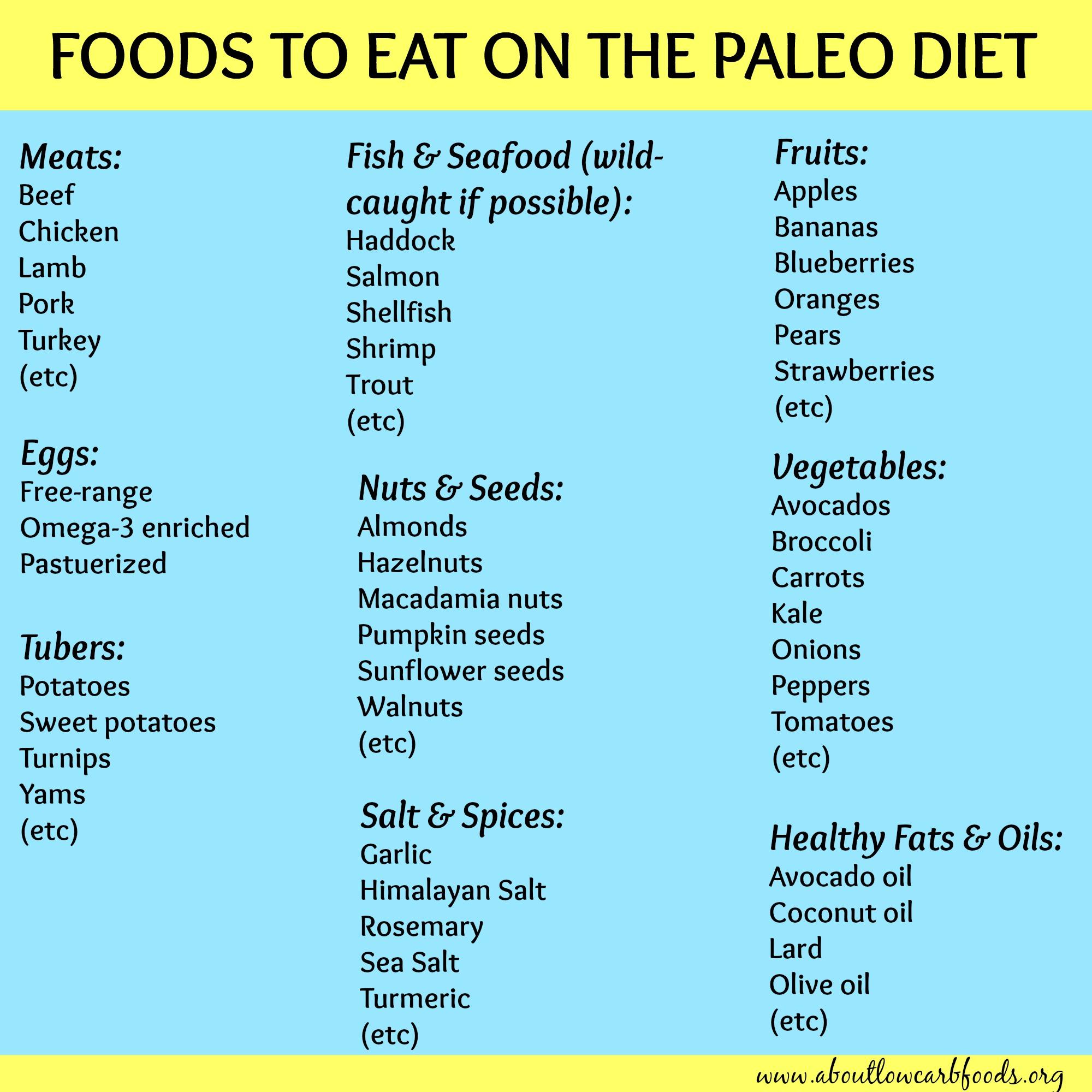 what is paleo diet plan